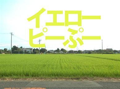ぷータイトル.JPG