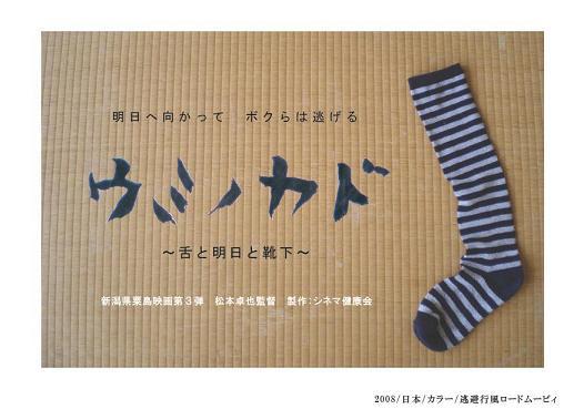 ウミカド靴下.JPG